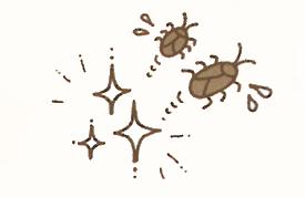 ゴキブリがおうちをねらってる